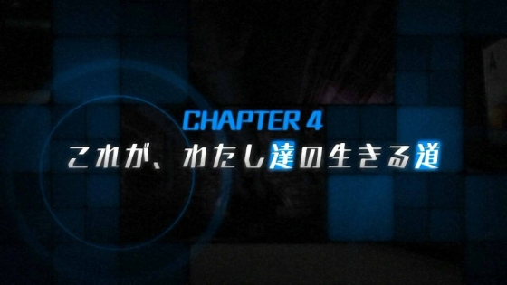 zzs4 (1)