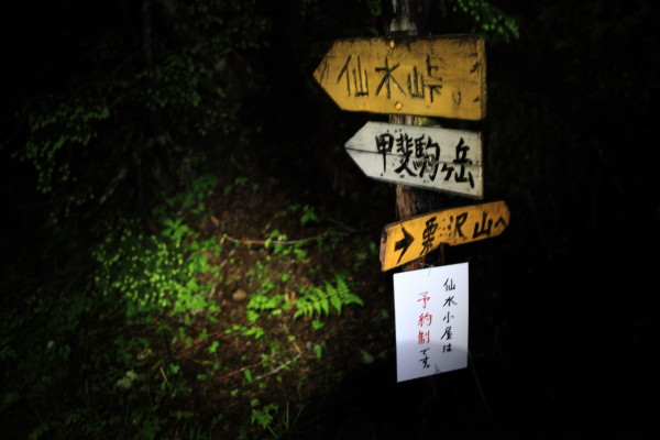 2013_0718_kaikoma0003.jpg