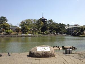sarusawa0419_convert_20130419115634.jpg