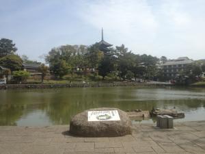 sarusawa0420_convert_20130420113930.jpg