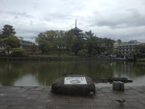 sarusawa0424_convert_20130424114313.jpg