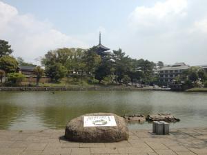 sarusawa0428_convert_20130426113139.jpg