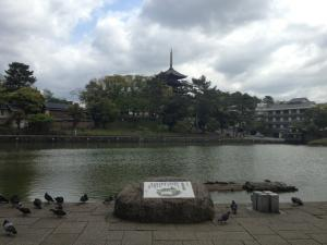 sarusawa0501_convert_20130501113849.jpg