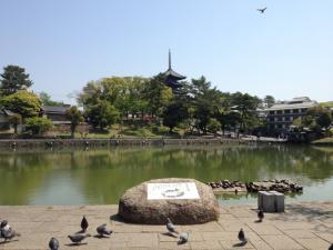 sarusawa0506_convert_20130506114438.jpg