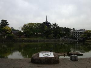 sarusawa0510_convert_20130510125956.jpg