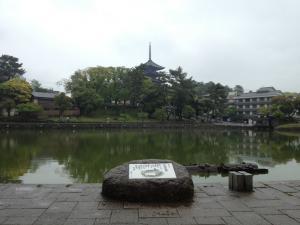 sarusawa0511_convert_20130511112001.jpg