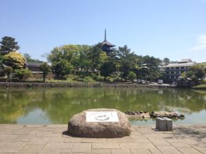 sarusawa0513_convert_20130513121336.jpg