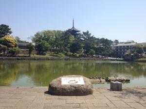 sarusawa0514_convert_20130514111929.jpg