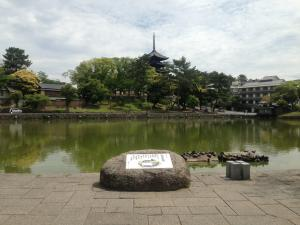 sarusawa0519_convert_20130519112504.jpg