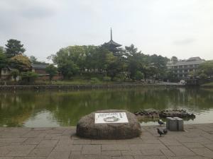 sarusawa0521_convert_20130521110651.jpg