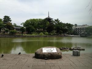sarusawa0705_convert_20130705114834.jpg