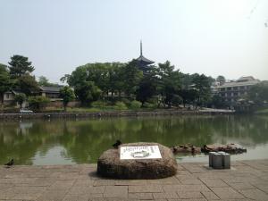 sarusawa0810_convert_20130810110905.jpg