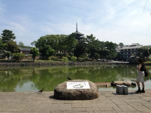 sarusawa0817_convert_20130817114611.jpg