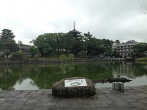 sarusawa0826_convert_20130826105200.jpg