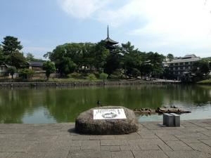 sarusawa0828_convert_20130828120710.jpg