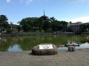 sarusawa0910_convert_20130910110214.jpg