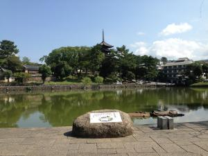 sarusawa0911_convert_20130911112900.jpg