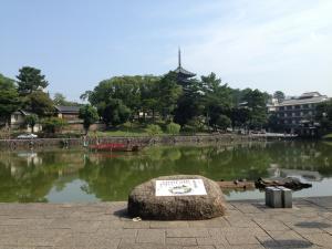 sarusawa0913_convert_20130913113241.jpg
