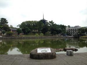 sarusawa1002_convert_20131002111143.jpg