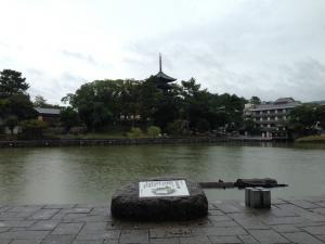 sarusawa1023_convert_20131023112621.jpg