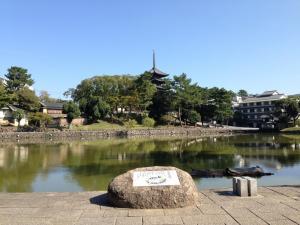 sarusawa1028_convert_20131028112616.jpg
