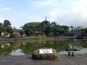 sarusawa1104_convert_20131104105114.jpg