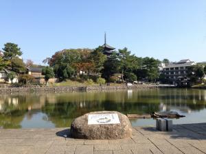 sarusawa1108_convert_20131108104921.jpg