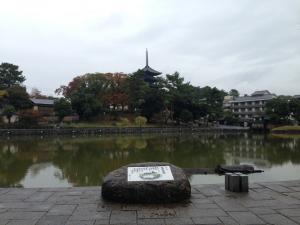 sarusawa1115_convert_20131115120531.jpg