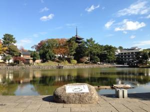 sarusawa1118_convert_20131118132027.jpg