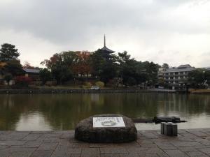 sarusawa1120_convert_20131120112126.jpg