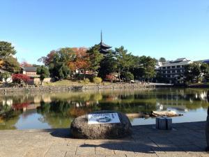 sarusawa1123_convert_20131123104137.jpg