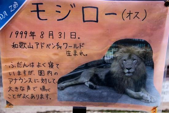 池田動物園_7
