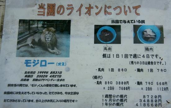 池田動物園_6