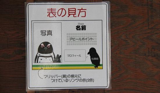 神戸花鳥園_7