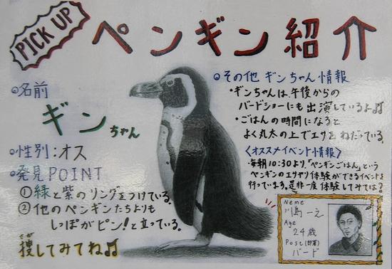 神戸花鳥園_10