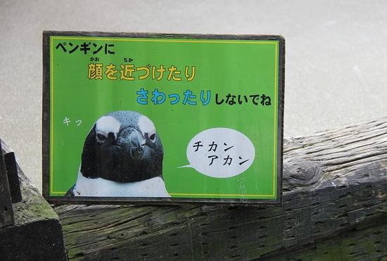 神戸花鳥園_21