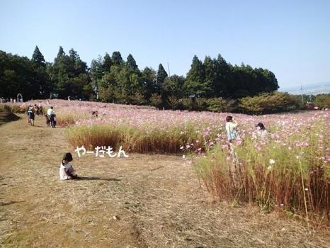 20131028_09.jpg