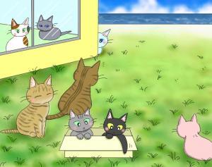 猫友日めくりカレンダー 2014 ③