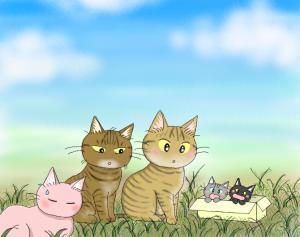 猫友日めくりカレンダー 2014 ①