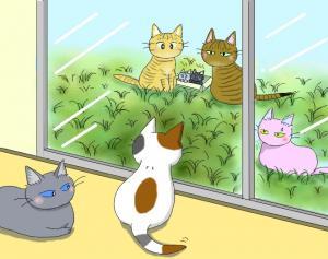 猫友日めくりカレンダー 2014 ②