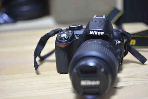 D3100(1)