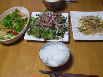 ベトナム風牛肉サラダ他