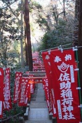 佐助稲荷神社 059