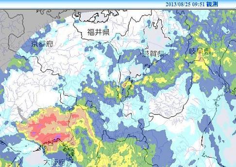 XRAIN 雨量情報 2013年8月25日9時51分 c