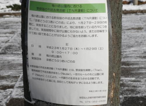 20110117 (106)