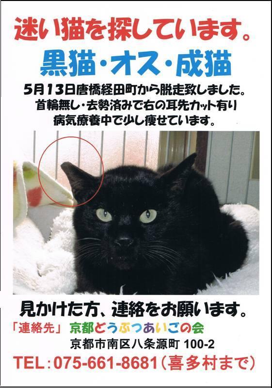 CCF20130517_00000.jpg