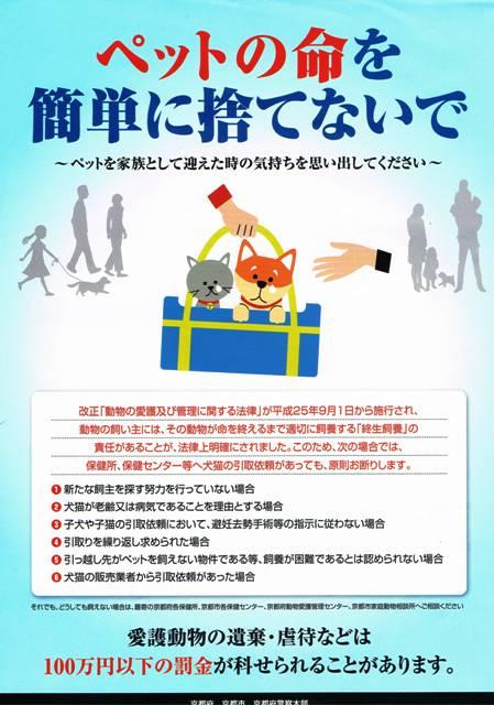CCF20130925_00000.jpg