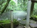 平泉寺白山神社6