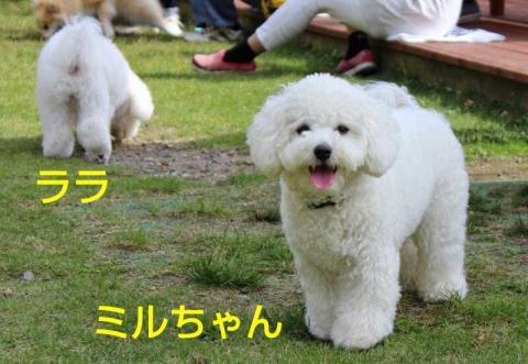 20141013005846305.jpg