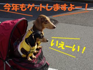 20130102011.jpg
